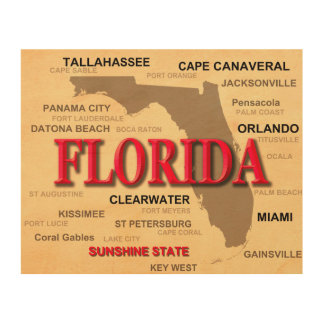 Florida Cities And Towns State Pride Map Wood Wall Art