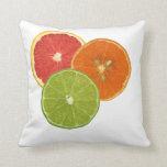 Florida Citrus Pillow