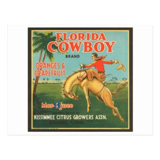 Florida Cowboy Kissimmee Citrus Growers Vintage Cr Postcard