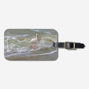 Beach Themed Florida Crane Luggage Tag