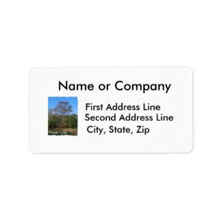 Florida Cypress Swamp Vertical Address Label