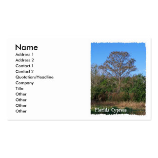 Florida Cypress Swamp Vertical Double-Sided Standard Business Cards (Pack Of 100)