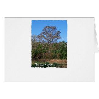 Florida Cypress Swamp Vertical Greeting Card