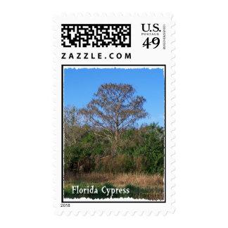 Florida Cypress Swamp Vertical Postage