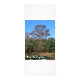 Florida Cypress Swamp Vertical Rack Card Template