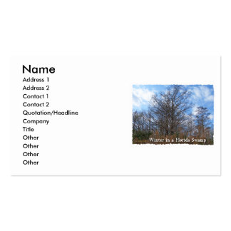 Florida Cypress Swamp Winter scene Business Card