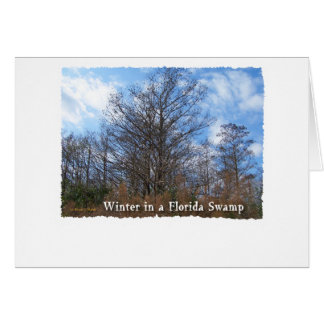 Florida Cypress Swamp Winter scene Cards