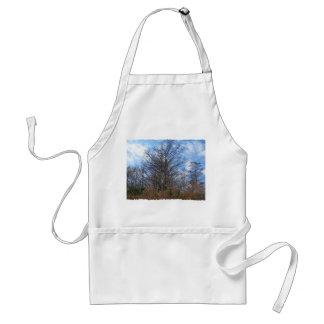Florida Cypress winter scene swamp blue sky Apron