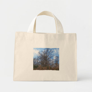 Florida Cypress winter scene swamp blue sky Tote Bag