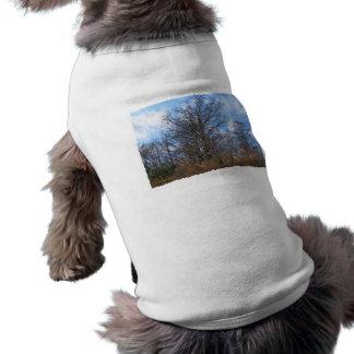 Florida Cypress winter scene swamp blue sky Pet Tee Shirt