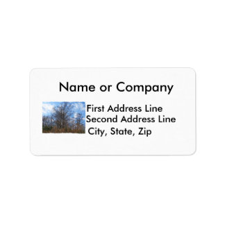 Florida Cypress winter scene swamp blue sky Personalized Address Labels