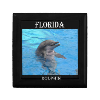 Florida Dolphin Jewelry Box