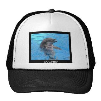 Florida Dolphin Trucker Hat