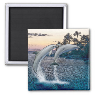 Florida Dolphins Magnet