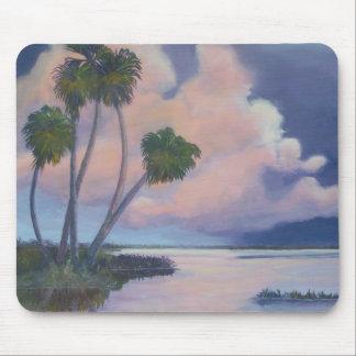 Florida Evening Sky Mousepad