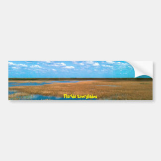 Florida Everglades Bumper Sticker