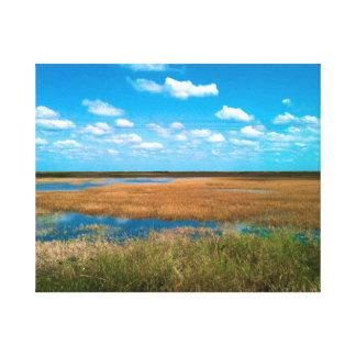 Florida Everglades Stretched Canvas Print