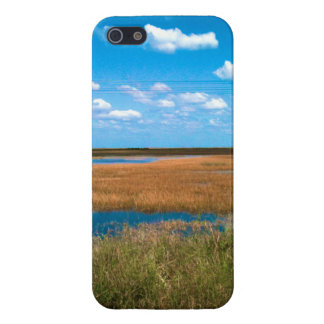 Florida Everglades Covers For iPhone 5