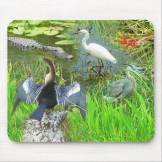Florida Everglades National Park wildlife Mouse Pad