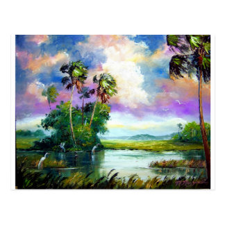 Florida Everglades Wind Postcard