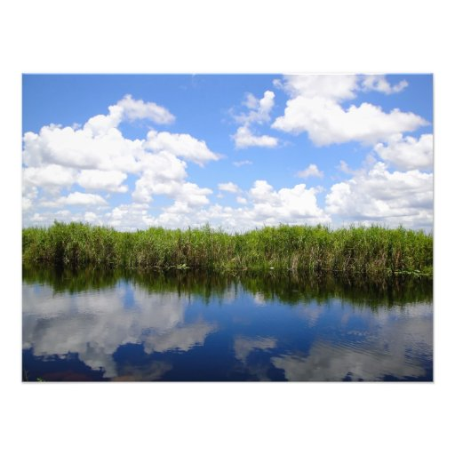 Florida everglades with clouds photo print
