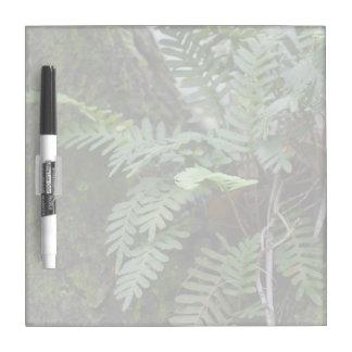 florida ferns and moss  oak tree nature landscape Dry-Erase board
