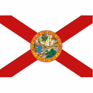 Florida Flag Magnet Cut Out