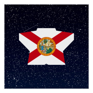 Florida Flag Star In Space Perfect Poster