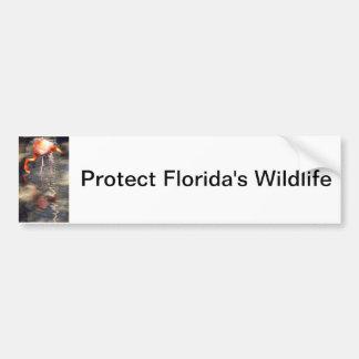 Florida Flamingo Car Bumper Sticker
