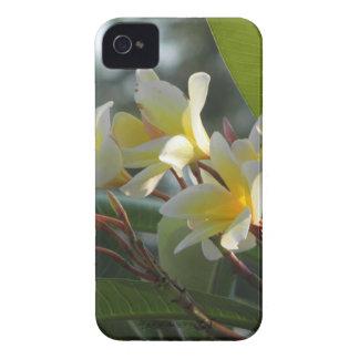 Florida Flowers Case-Mate iPhone 4 Cases