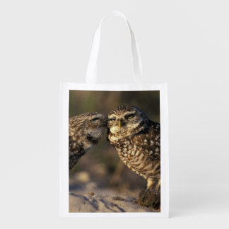Florida, Fort Myers. Burrowing Owl pair bonding Reusable Grocery Bag