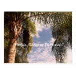 Florida Gateway To Heaven Postcard