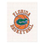 Florida Gator Basketball Postcard