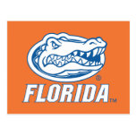 Florida Gator Head - Blue & White Post Cards