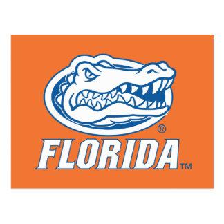 Florida Gator Head Blue & White Postcard