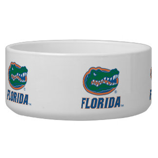 Florida Gator Head Full-Color Bowl