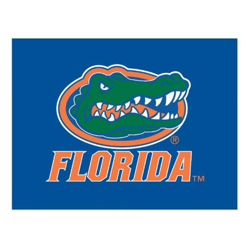 Florida Gator Head - Orange & White Post Card