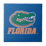 Florida Gator Head - Orange & White Small Square Tile