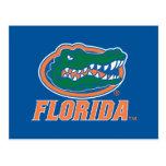 Florida Gator Head Postcard