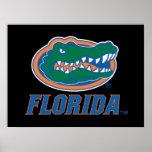 Florida Gator Head Poster