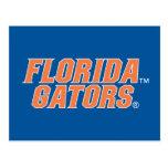 Florida Gators - Orange & White Postcard