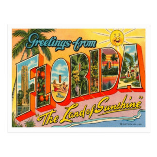 Florida Greetings From US States Postcard