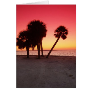 Florida Gulf Sunset Greeting Cards