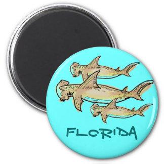 Florida hammerhead sharks magnet