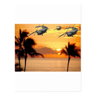Florida Helicopter Formation Postcard