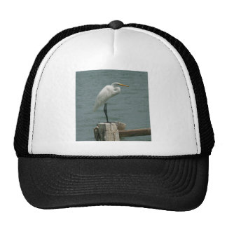Florida Heron Mesh Hats