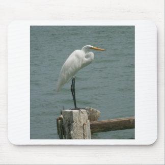 Florida Heron Mouse Pad