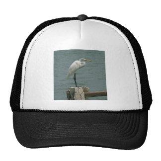 Florida Heron Trucker Hat