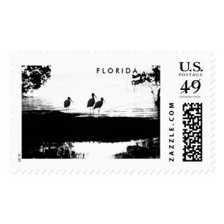 Florida Ibis Stamp