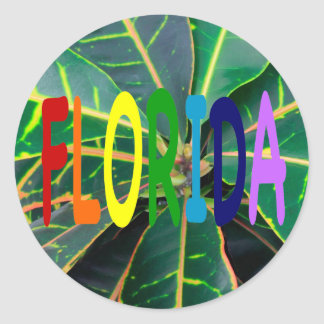 FLORIDA in a  rainbow of colors Round Stickers